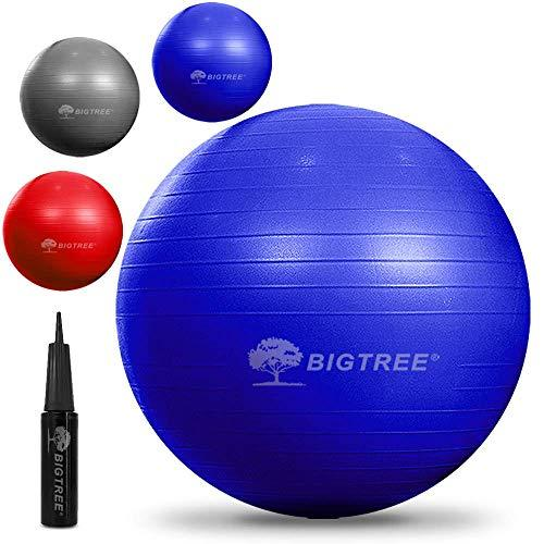 Bigtree Exercise Ball Extra Thick Yoga Ball Chair, Anti-Burst Heavy Duty Stability Ball, Birthing Ball with Quick Pump (Office & Home & Gym)(Blue, 55CM)